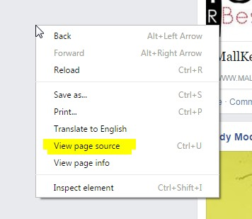 Viewing page source on chrome browser in windows OS