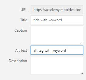 wordpress alt tag seo